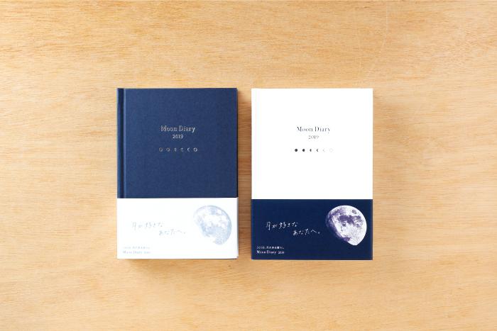 Moon Diary 1